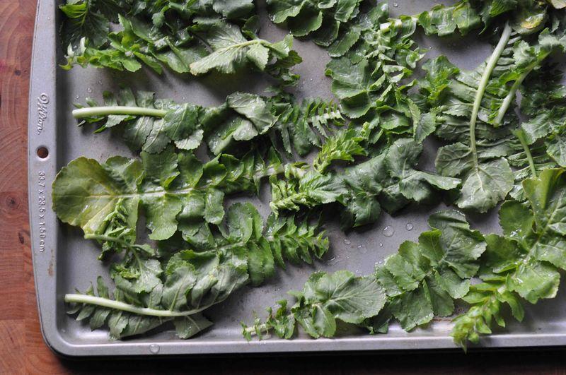 Turnip leaves